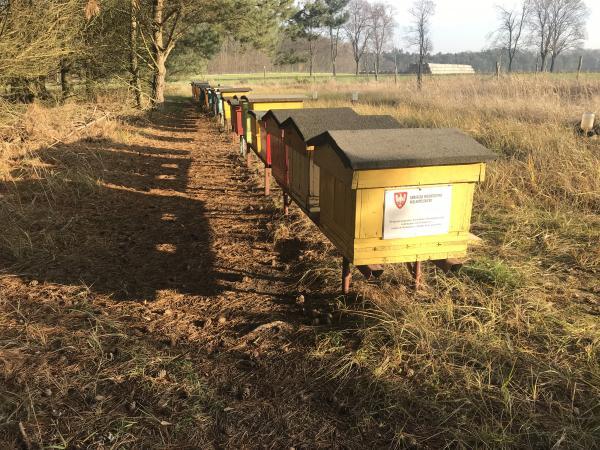Samorząd Województwa Wielkopolskiego czwarty rok z rzędu wspiera pszczelarzy.- kliknij aby powiększyć