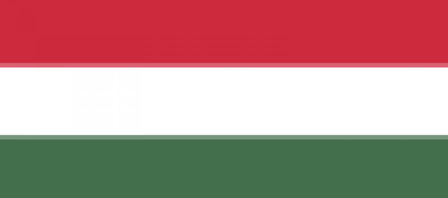 Polsko-węgierskie rozmowy o rozwoju regionalnym - zobacz więcej