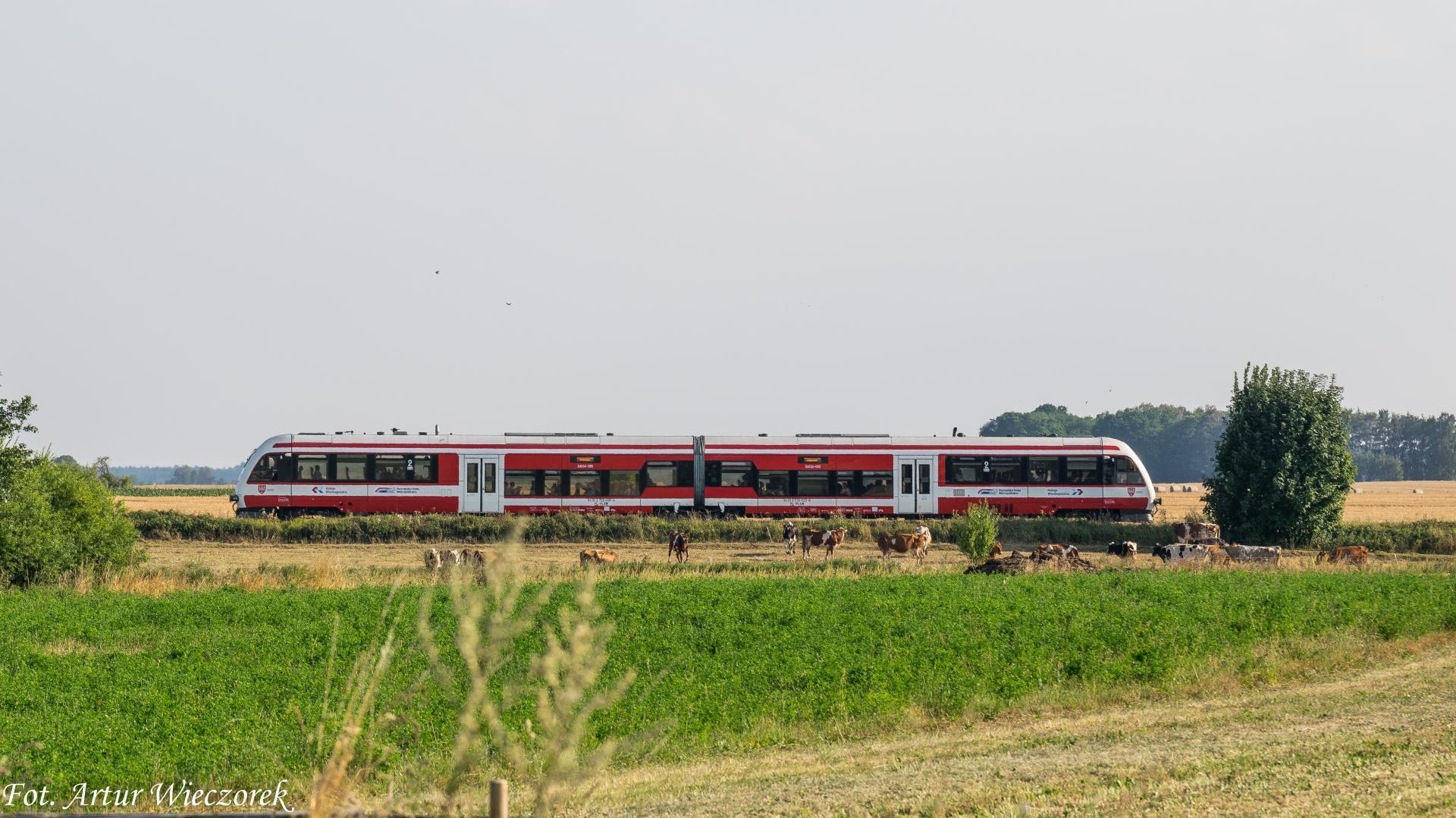 Konsultacje dot. rewitalizacji linii kolejowej Gostyń – Kąkolewo  - zobacz więcej